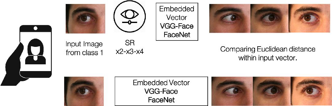 Figure 1 for Selfie Periocular Verification using an Efficient Super-Resolution Approach