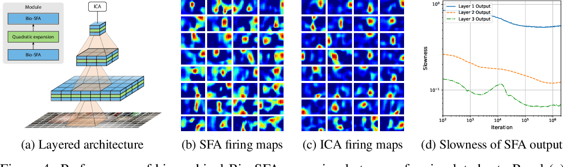 Figure 4 for A biologically plausible neural network for Slow Feature Analysis