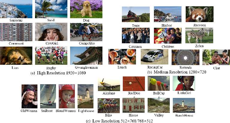Figure 1 for Subjective evaluation of traditional and learning-based image coding methods