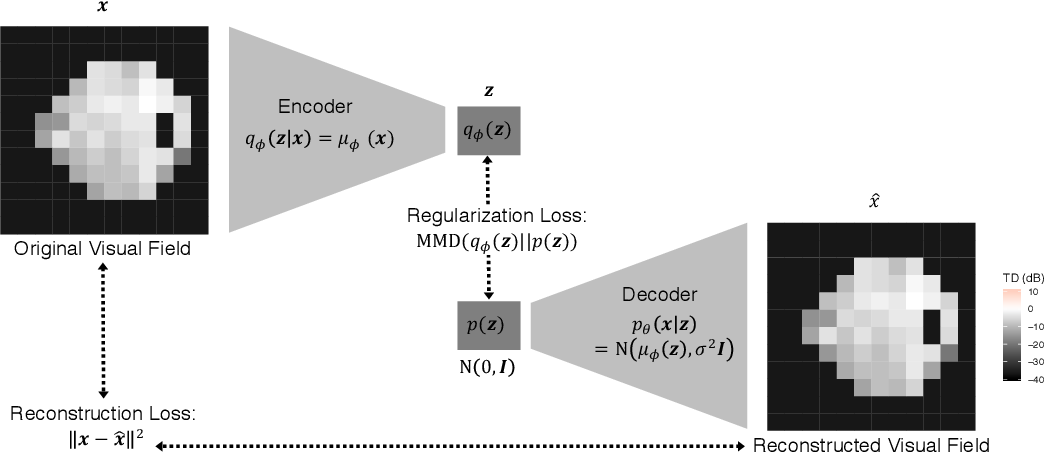 Figure 2 for Scalable Modeling of Spatiotemporal Data using the Variational Autoencoder: an Application in Glaucoma