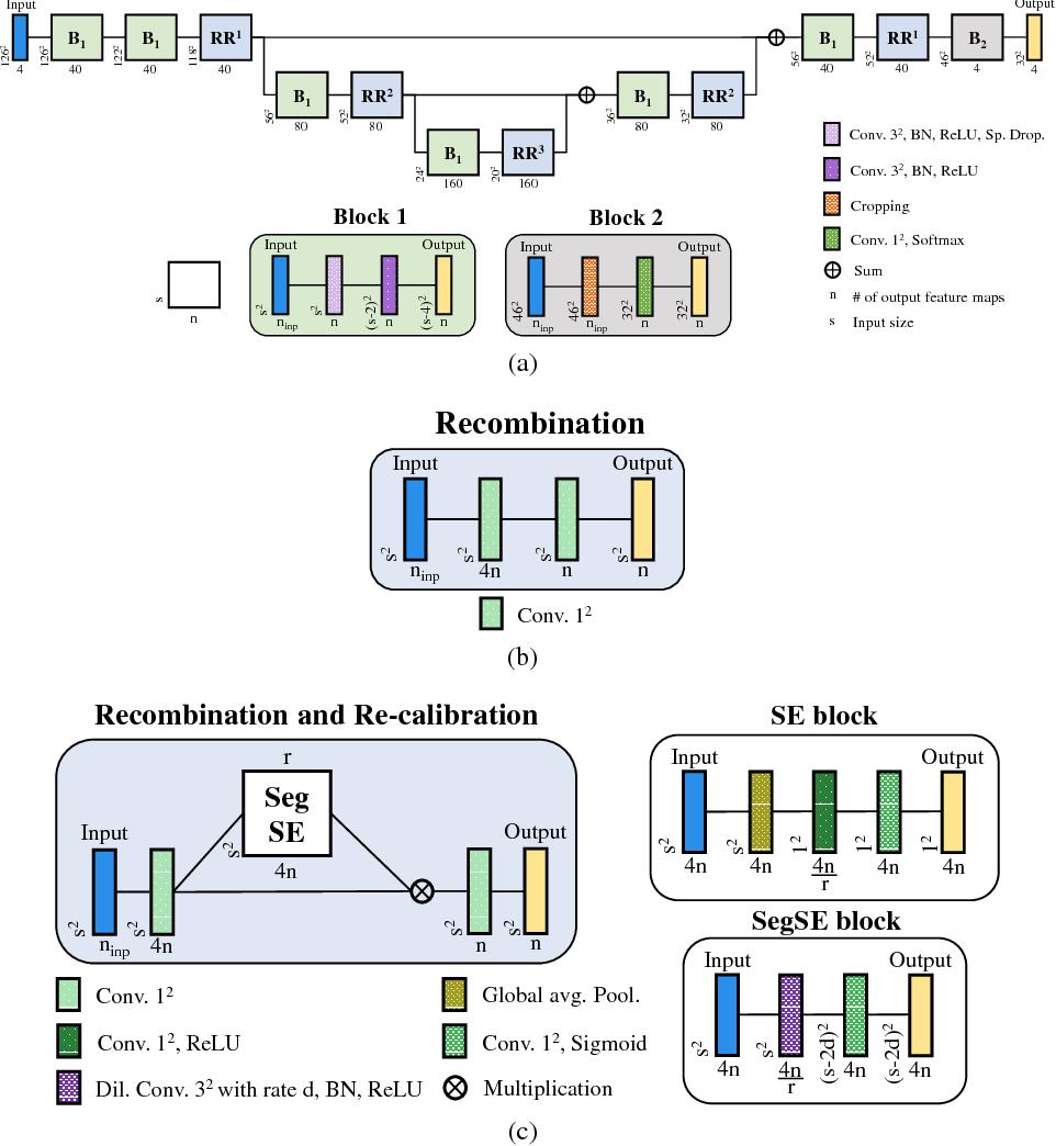 Figure 3 for Adaptive feature recombination and recalibration for semantic segmentation: application to brain tumor segmentation in MRI
