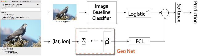 Figure 3 for Geo-Aware Networks for Fine Grained Recognition