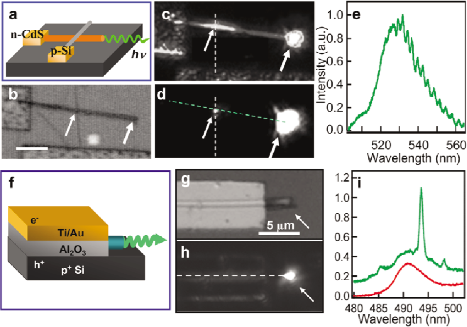 Figure 10 from Integrated nanoscale electronics and