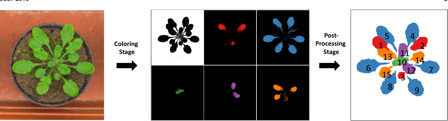 Figure 1 for Instance Segmentation by Deep Coloring