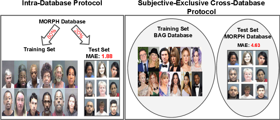 Figure 1 for A Flatter Loss for Bias Mitigation in Cross-dataset Facial Age Estimation