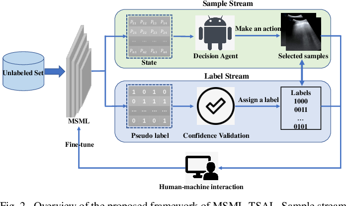 Figure 2 for Semi-Supervised Active Learning for COVID-19 Lung Ultrasound Multi-symptom Classification