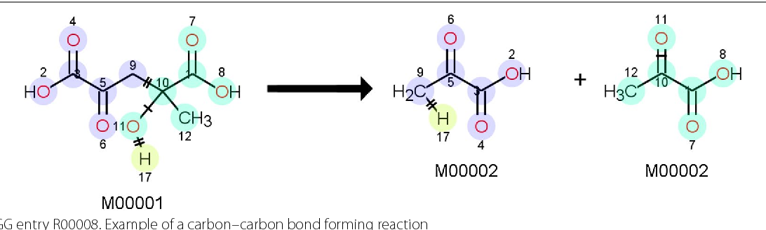 Fig. 15 KEGG entry R00008. Example of a carbon–carbon bond forming reaction