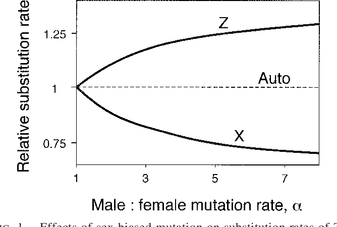 FIG. 1. Effects of sex-biased mutation on substitution rates of Zand X-linked loci relative to autosomal loci. Additive fitness effects (h 5 1/2), dosage compensation, and equal selection on both sexes are assumed.