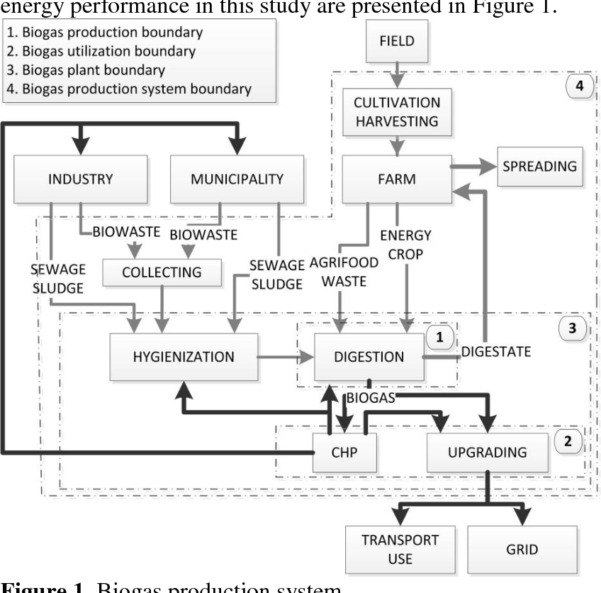 Evaluation of methods for estimating energy performance of biogas