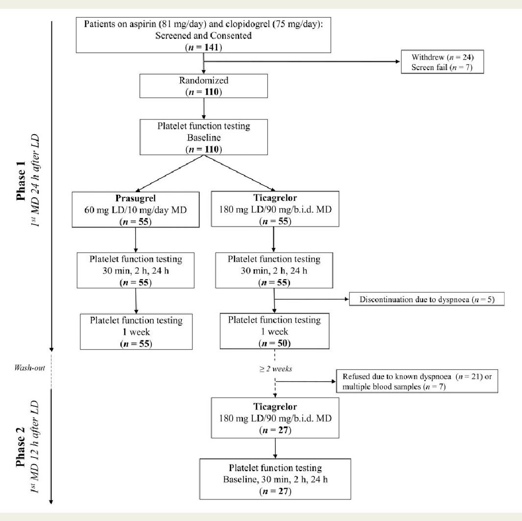 Figure 1 From A Head To Pharmacodynamic Comparison Of Prasugrel Clopidrogel 75 Study Design And Subject Disposition After Completing Phase First Ticagrelor
