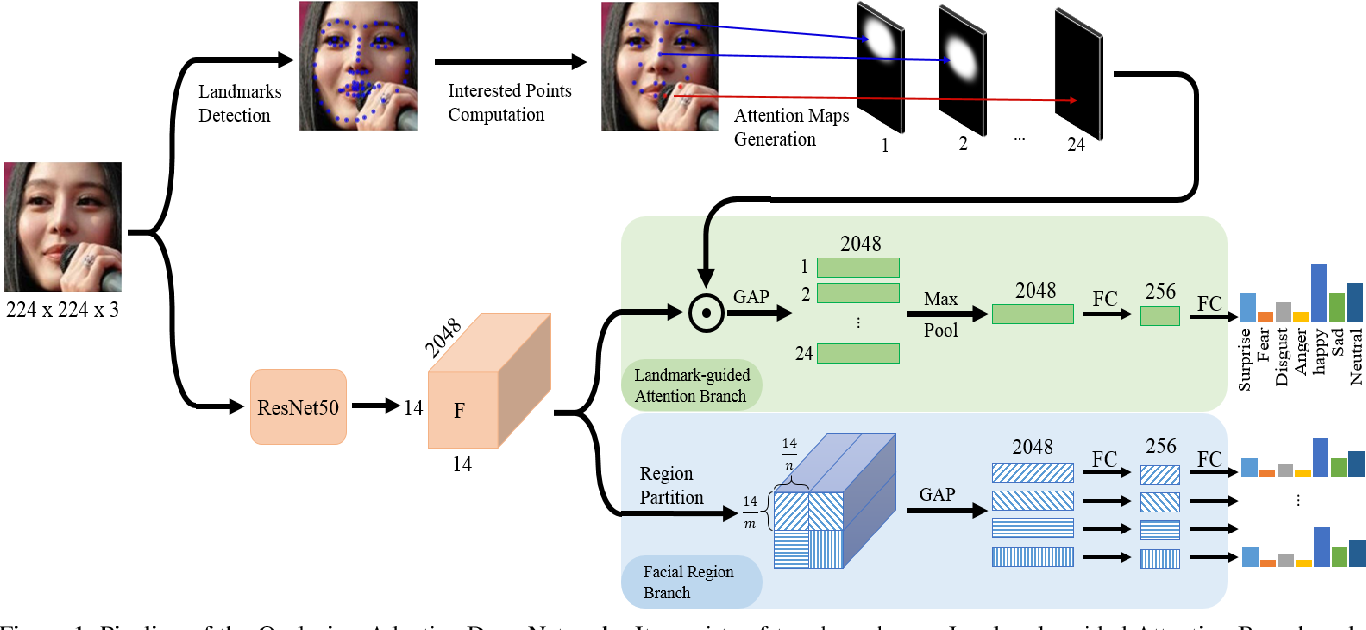 Figure 1 for Occlusion-Adaptive Deep Network for Robust Facial Expression Recognition