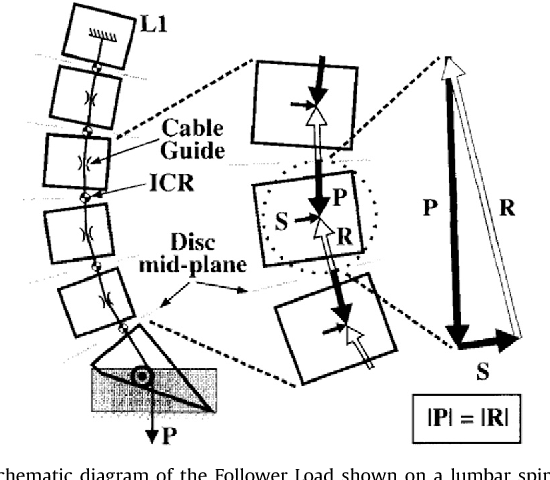 Figure 3 From Fundamental Biomechanics Of The Spine What We Have