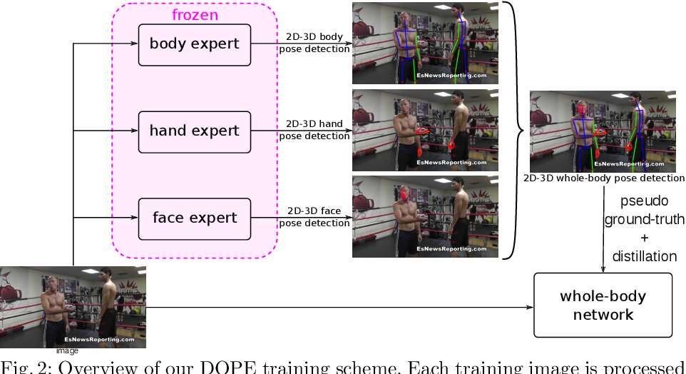Figure 2 for DOPE: Distillation Of Part Experts for whole-body 3D pose estimation in the wild