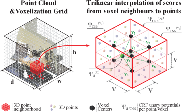Figure 3 for SEGCloud: Semantic Segmentation of 3D Point Clouds