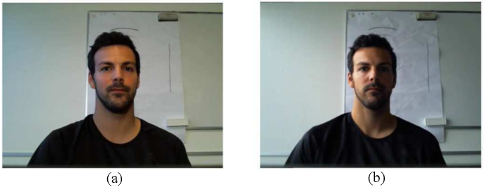 Figure 1 for A Comparative Evaluation of Heart Rate Estimation Methods using Face Videos