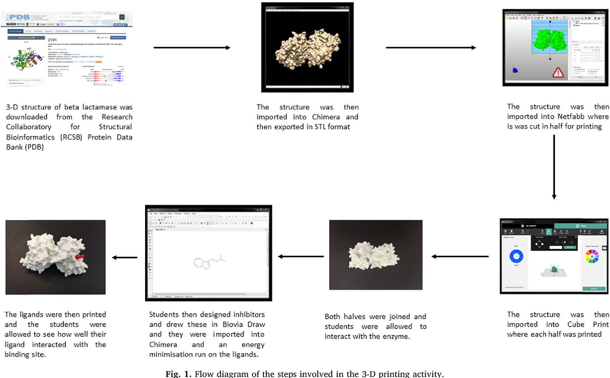 A pilot study assessing the value of 3D printed molecular modelling