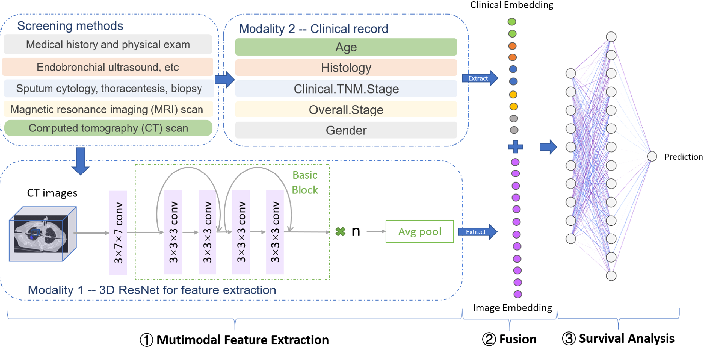 Figure 1 for DeepMMSA: A Novel Multimodal Deep Learning Method for Non-small Cell Lung Cancer Survival Analysis