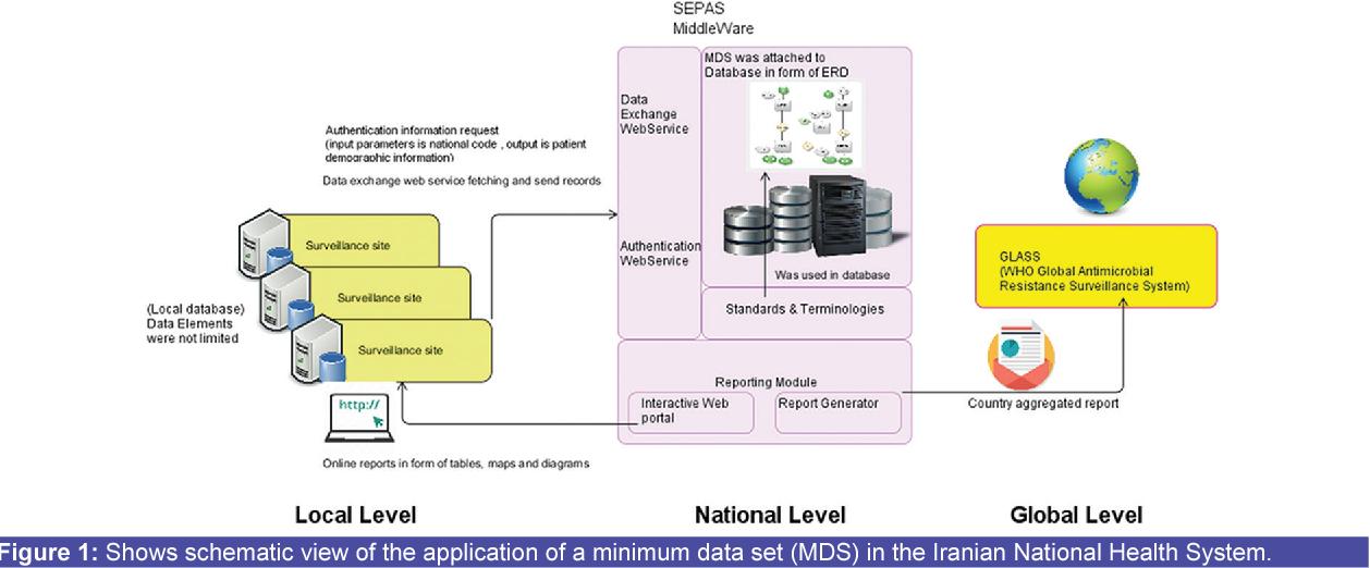 National Minimum Data Set for Antimicrobial Resistance Management  Toward  Global Surveillance System - Semantic Scholar 3e7ff6f50c33