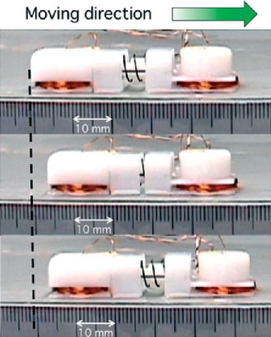 Figure 10. Sequences of the locomotive experiment on a flat plane covered with mucus