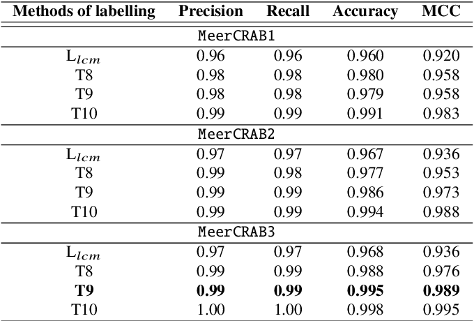 Figure 4 for MeerCRAB: MeerLICHT Classification of Real and Bogus Transients using Deep Learning