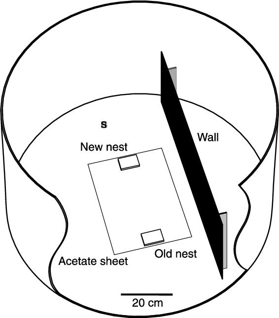 Nest Wiring Diagram Hvac