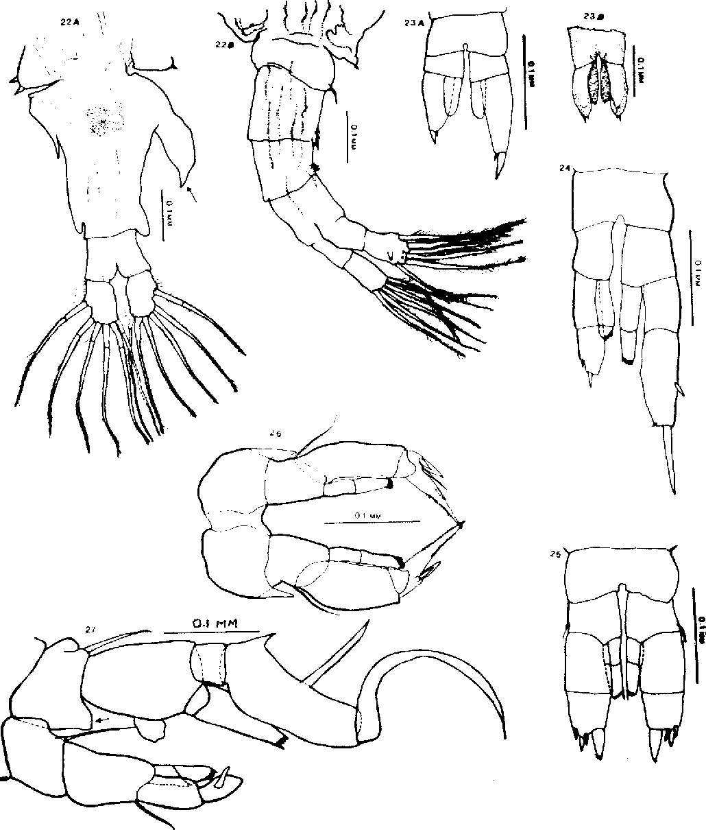 figure 22-27