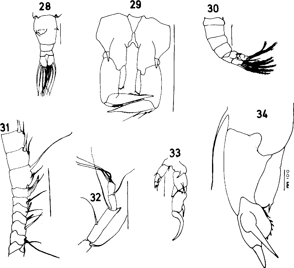 figure 28-34