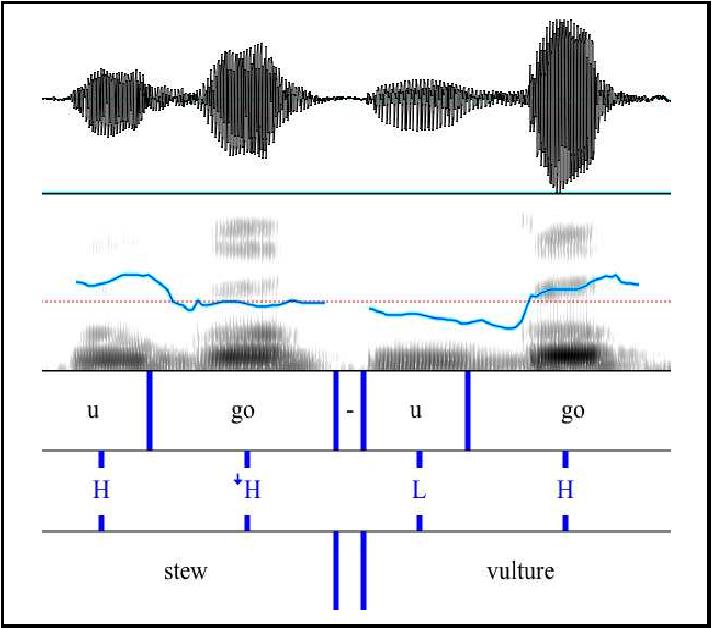 Figure 5.7: Speech signal for úg↓o 'a kind of stew' and ùgó 'vulture' .