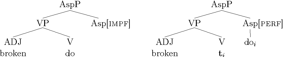 Figure 6.4: The imperfective and the perfective aspect (Roberts 2000, 51, modified).
