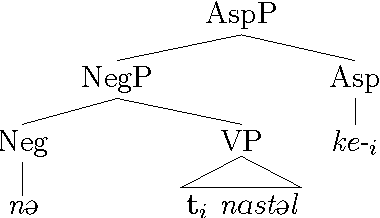 Figure 6.5: Syntactic generation of example (98) (Roberts 2000, 58, modified).