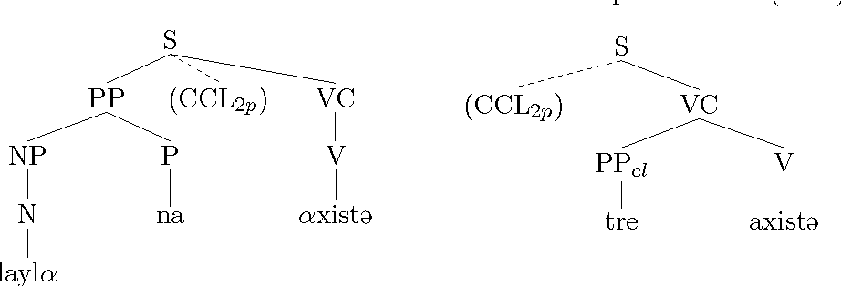 Figure 6.7: C-structure representations for (107a) and (107b).