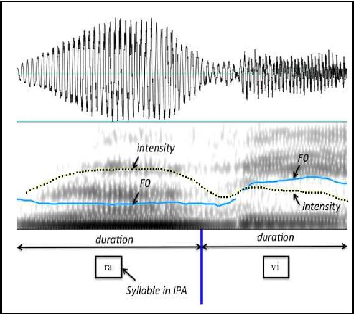 Figure 3.7: Speech signal for Ravi.