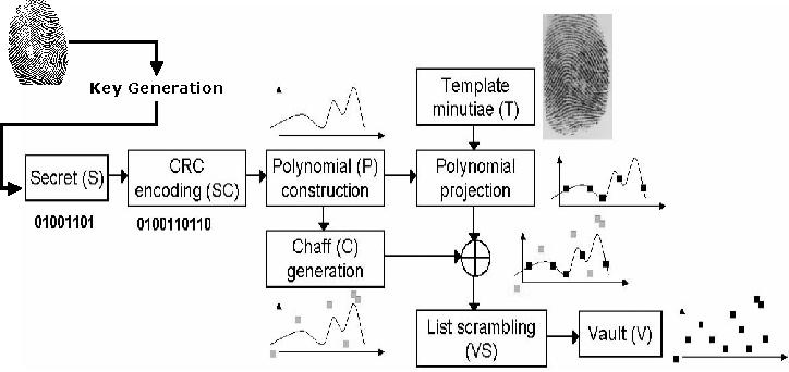 Biometric Digital Signature Key Generation and Cryptography