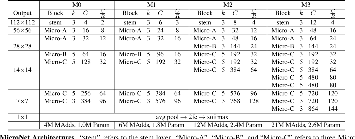 Figure 2 for MicroNet: Improving Image Recognition with Extremely Low FLOPs