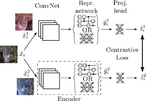Figure 1 for Quantum Self-Supervised Learning