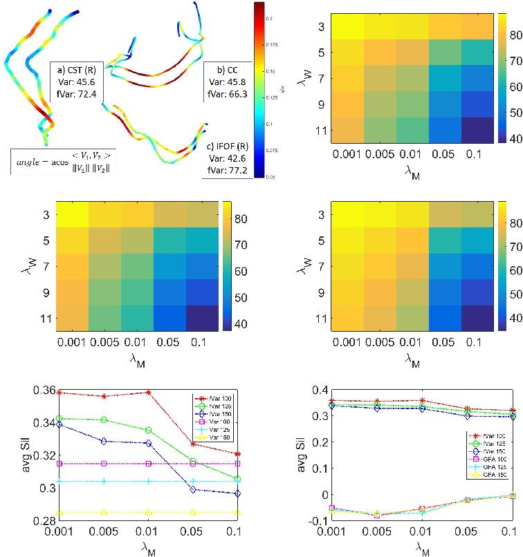 Figure 1 for White Matter Fiber Segmentation Using Functional Varifolds