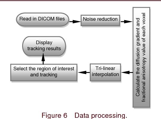PDF] Tri-linear interpolation-based cerebral white matter