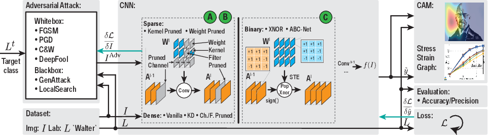 Figure 1 for BreakingBED -- Breaking Binary and Efficient Deep Neural Networks by Adversarial Attacks