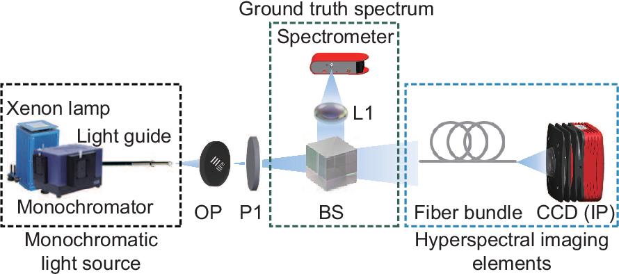 Figure 4 for Polarized hyperspectral imaging with single fiber bundle via incoherent light transmission matrix approach