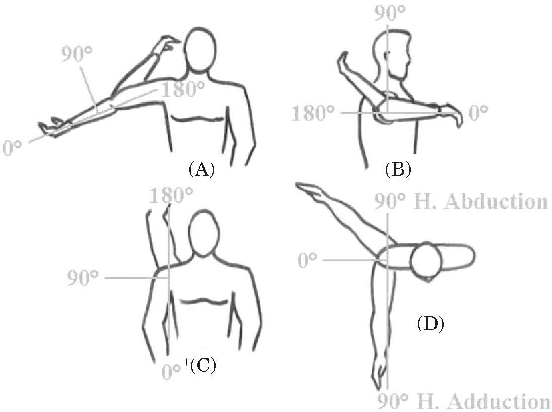 shoulder research paper Your rotator cuff is located in your shoulder area it is made of muscles and tendons it helps your shoulder to move and stay stable problems with the rotator cuff are common.