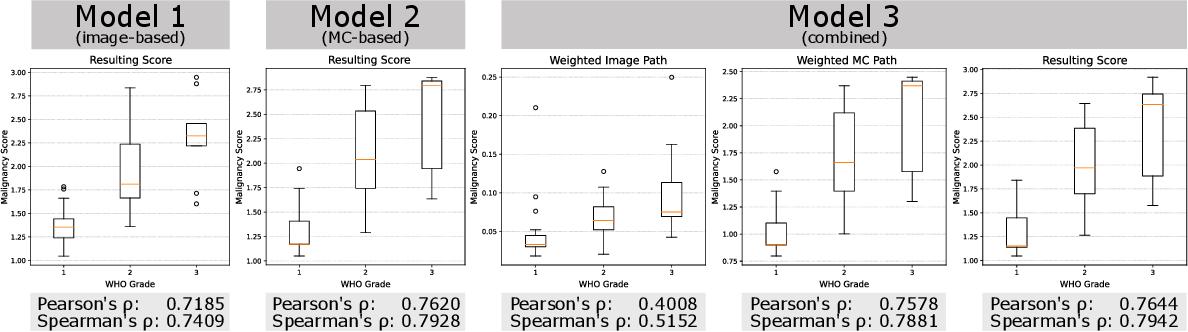 Figure 3 for Automatic and explainable grading of meningiomas from histopathology images