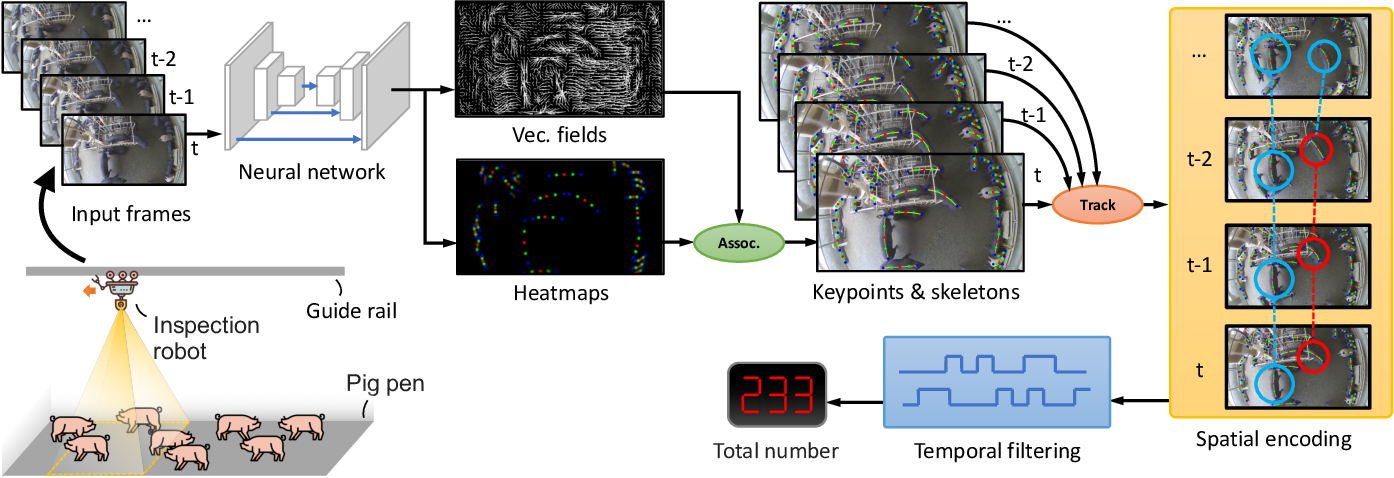 Figure 3 for Efficient Pig Counting in Crowds with Keypoints Tracking and Spatial-aware Temporal Response Filtering