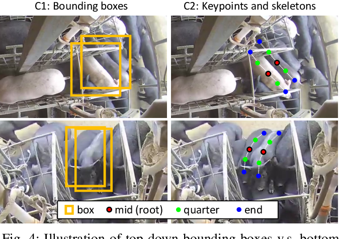 Figure 4 for Efficient Pig Counting in Crowds with Keypoints Tracking and Spatial-aware Temporal Response Filtering