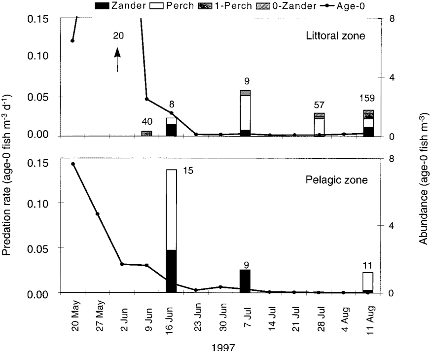 Predation by piscivorous fish on age-0 fish: spatial and