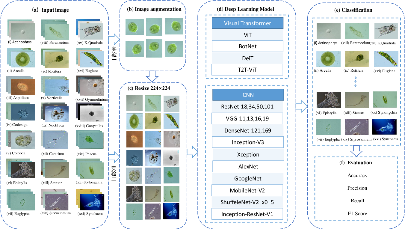Figure 1 for A Comparison of Deep Learning Classification Methods on Small-scale Image Data set: from Convolutional Neural Networks to Visual Transformers