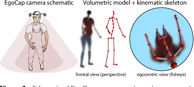 Figure 2 for EgoCap: Egocentric Marker-less Motion Capture with Two Fisheye Cameras (Extended Abstract)