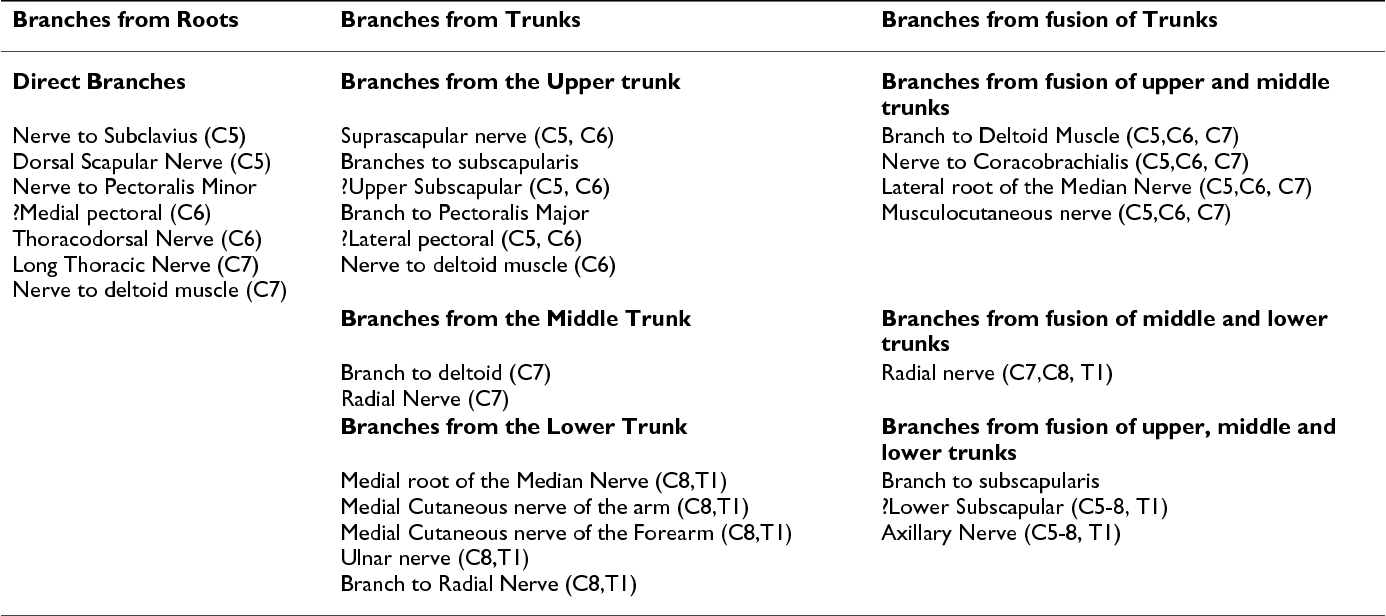 Variations In Brachial Plexus And The Relationship Of Median Nerve