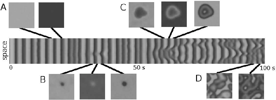 Figure 7: Space-time plot of the evolution of the system under turbulent conditions and with external stochastic forcing. Snapshots of the system are plotted in the pannels. Panel A shows the initial global oscillation typically observed in the numerical simulation. Panel B shows the growth of a single spot which finally disappears. Panel C shows the generation of a pacemaker due to the intermediate amplitude of the external global noise. Panel D shows the turbulent patterns. Values of the partial presures are: pO2 = 1.3 · 10 −4 and pCO = 4.81 · 10 −5. Internal and external noises are respectively ǫi = 0.0005 and σ = 0.3%pCO. The size of the system is 0.2× 0.2 mm 2.