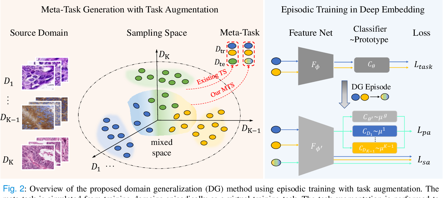 Figure 3 for Domain Generalization on Medical Imaging Classification using Episodic Training with Task Augmentation