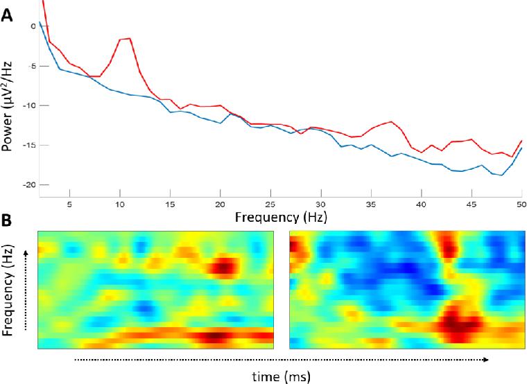Figure 1 for EnK: Encoding time-information in convolution